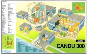 thumbnail of CANDU_300_PHWR